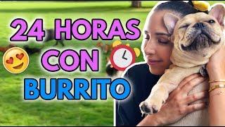 24 HORAS CON BURRITO EL PERRITO 🐕 2 Nov 2018