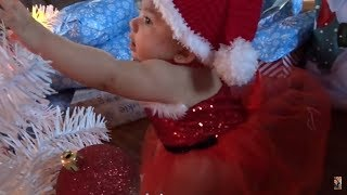 Mamacita Donde Esta Santa Claus?