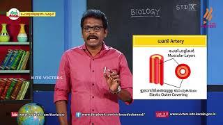 Standard 9 | Biology | Class – 15