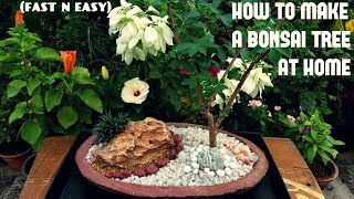 How To Make A Bonsai At Home (FAST N EASY)