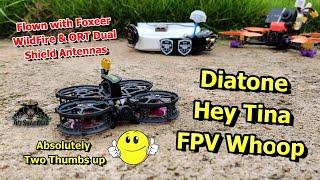 Diatone Hey Tina FPV Whoop 3S Cinewhoop FPV Racing Drone Runcam Nano 2