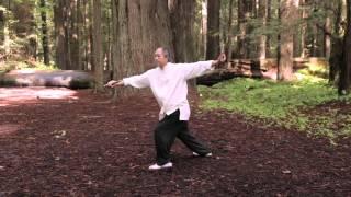 Tai Chi Sword 54-form by Master Yang (YMAA) 楊氏太極劍 - 五十四式
