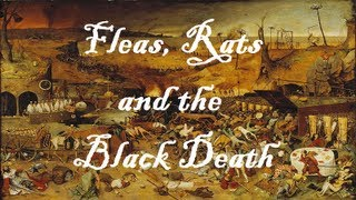 Black Death - Educational Song