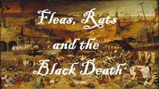 Black Death - Educational Song