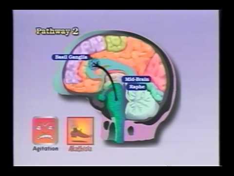 Combinação de fármacos para a hipertensão