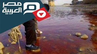 preview picture of video 'مصر العربية | أضحية العيد تلوث مياه النيل بالدقهلية'