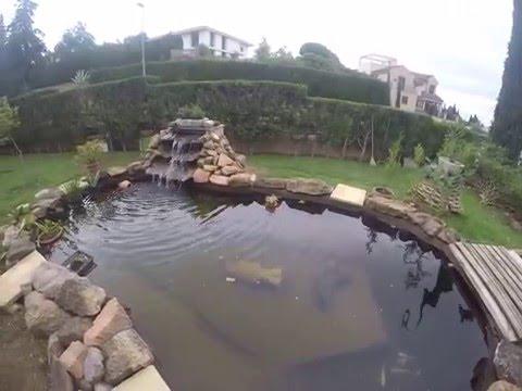 Estanque y limpieza semanal de filtro(ver en HD)