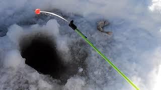На рыбалку ухта