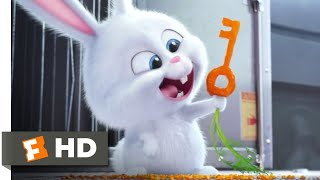 The Secret Life of Pets - Catching The Dog Catcher Scene | Fandango Family