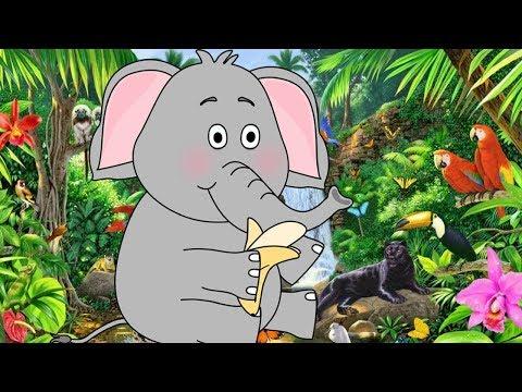 Розовый слон - веселая детская песня и мультик