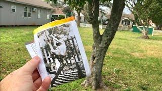 TDW 1656   Childhood Home Of Janis Joplin