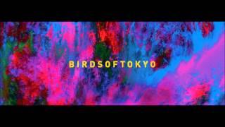 Birds Of Tokyo - Boy (album Version)