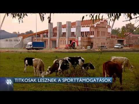 Magyar tarskereso guildford