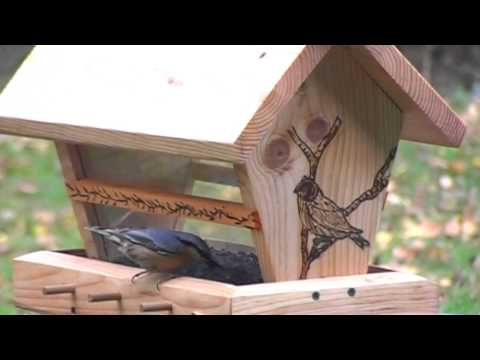 comment construire abri oiseaux la r ponse est sur. Black Bedroom Furniture Sets. Home Design Ideas