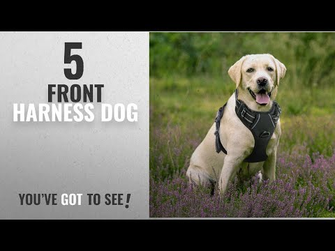 Top 5 Front Harness Dog [2018 Best Sellers]: Rabbitgoo Dog Harness No-Pull Pet Harness Adjustable