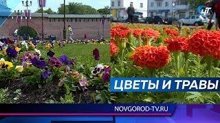 На улицах Великого Новгорода начались сезонные работы