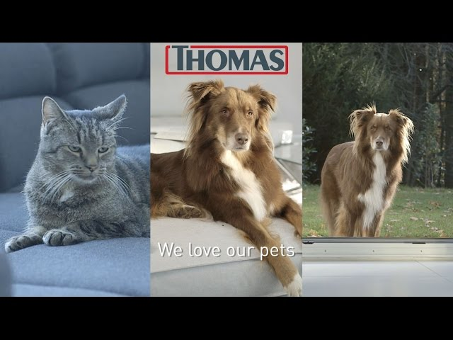 THOMAS PET&FAMILY PLUS