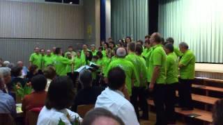 preview picture of video 'Perfekte Welle (Frühlingskonzert veranstaltet vom Gesangverein Bretten)'