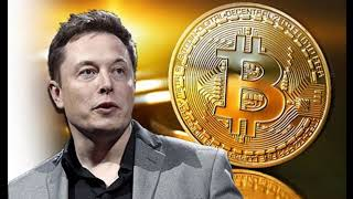 Breaking News _  Elon Musk hits the World of Cryptocurrency