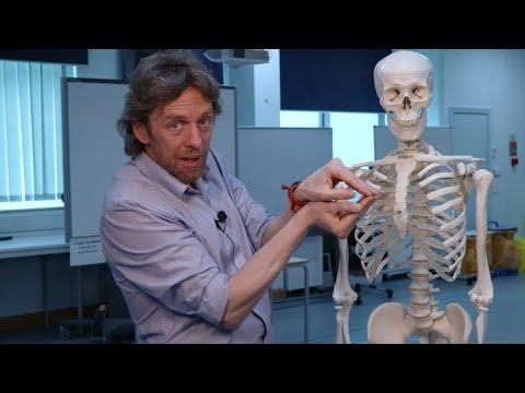 Mi deformálja a csuklóízület artrózisát