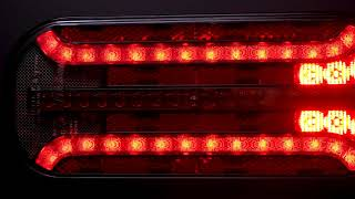 FT 230 LED Rear Lamps