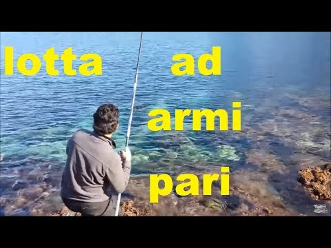 A che caccia di canale di frequenza e pesca