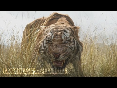 The Jungle Book |2016| All Fight Scenes [Edited]