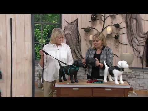 Martha Stewart Reflective Dog Harness W/ Matching Lead On QVC