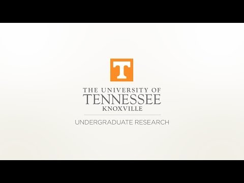 Undergraduate Research at Oak Ridge National Lab