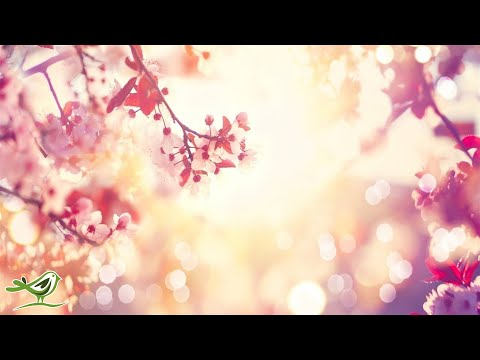 9 Hours of Relaxing Sleep Music: Soft Piano Music, Sleeping Music, Fall Asleep Fast ★98