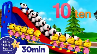 10 Little Animals | Kittens, Pandas, and Monkeys +Nursery Rhymes and Kids Songs | Little Baby Bum