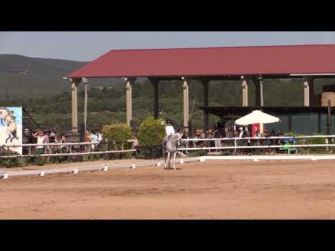 2 Fase Doma Vaquera 170721 Video C