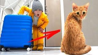 МАЛЕНЬКИЙ КОТЕНОК ОБИДЕЛСЯ на Сеню! Мы Больше НЕ ДРУЗЬЯ!? Видео про Котенка Голди