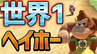 【世界1】世界最速のヘイホーと勝負!#494【マリオカート8DX】