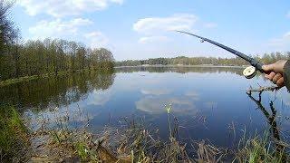 Вес поплавочной для ловля карася весной