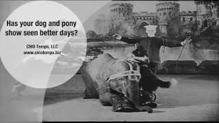 Dog and Pony Show
