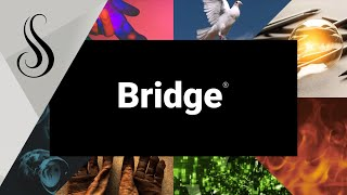 Register Now for Bridge®!
