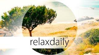 Soft & Peaceful Instrumental Music - light, calm - N°044 (4K)