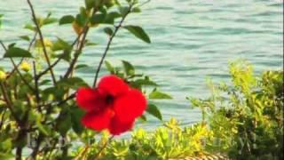 The Napili Kai Beach Resort