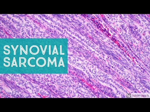 Papillomavirus konijn