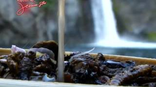 Kapuso Mo, Jessica Soho: Attack of the Flappy Birds, Kalye Sayawan at uod recipes