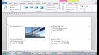 How to Put a Picture on a Mailing Label in Microsoft Word : Office Software Help