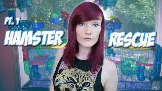 I'M RESCUING 6 HAMSTERS!!!   Part 1  The Mission!