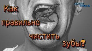 СЕКРЕТЫ ЗДОРОВЫХ ЗУБОВ / SECRETS OF HEALTHY TEETH