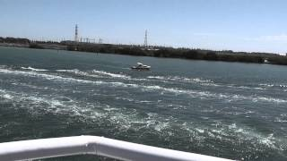preview picture of video 'Dolphin Cruise 2012'