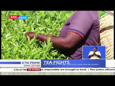 Court issues new orders on tea regulation putting on hold section of laws