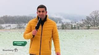 Mevsiminde Tarım   At ve Eşek Çiftliği - Bölüm 1   15.12.2018