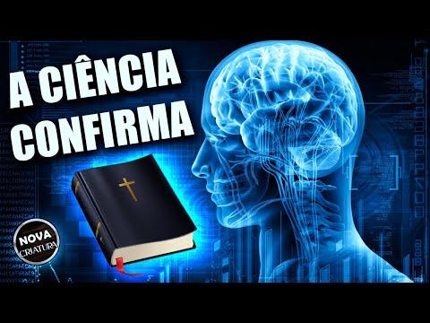 Incrvel Descoberta! O que acontece com o nosso crebro quando lemos a Bblia   Bblia Diria