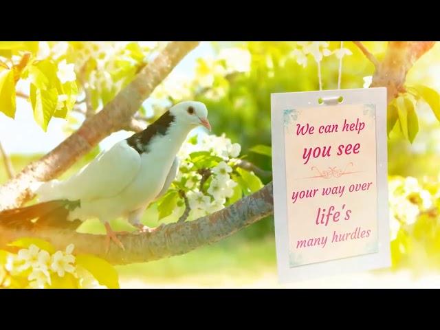 Wendy Dove - Psychic Readings Promo