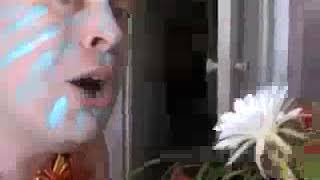 Пародия на папуаса Видео прикол Папуас